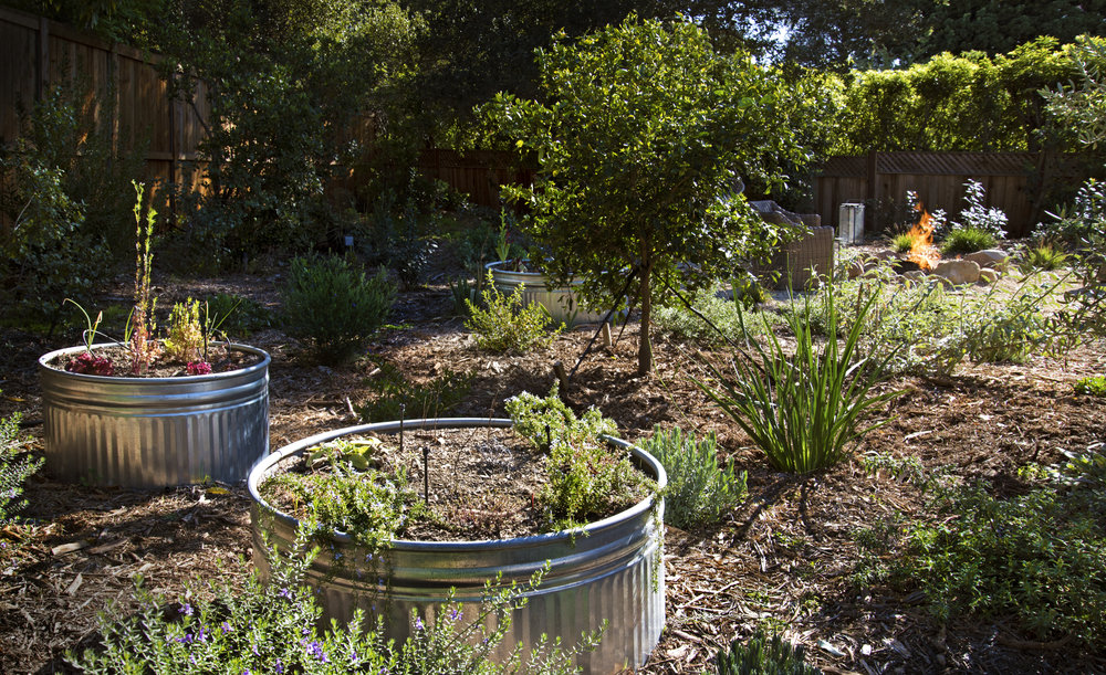 drought tolerant landscape with galvanized planters and fire pit