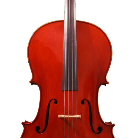 Ametto Starter Cello Outfit [$599]