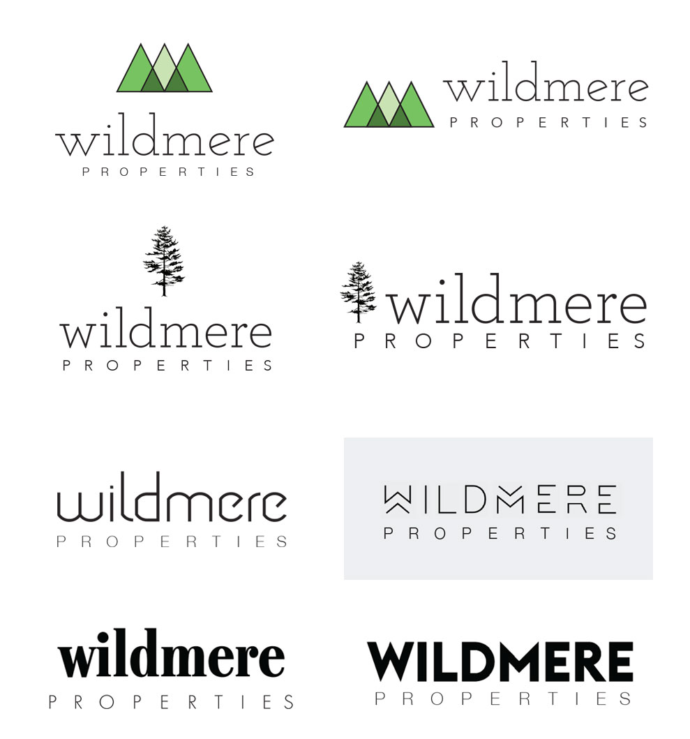 WILDMERE_logoExploration.jpg