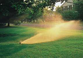watering_and_irrigation_015-main.jpg