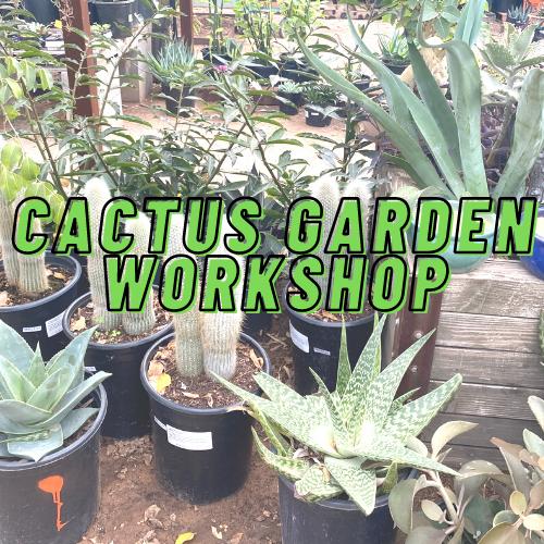 Cactus Garden Workshop Garden Center Phoenix Dig It Gardens