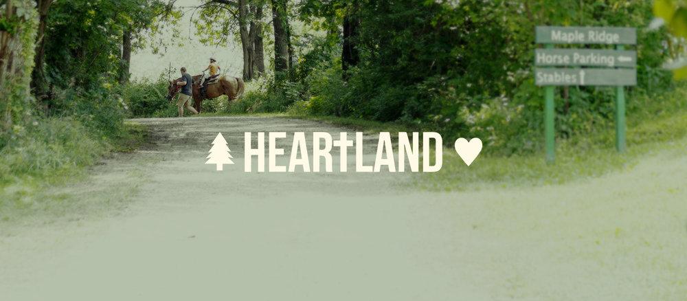 intoimage_heartland_horse2.jpg