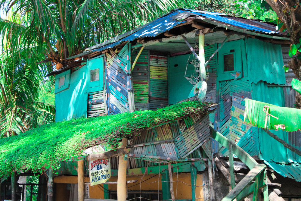 Roadside attraction : A riverside bar-resto in Camp du Coq, Haiti (North-East) en route to Cap Haitien is the definition of textured exhuberance. That moss roof though!