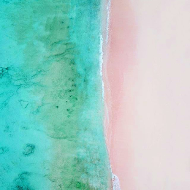 Hot damn I love this creative journey. The way it pushes and stretches ever onward. This week in particular the old me is blending with new artistic mood more everyday. It's just like these Bermuda shores shot from above by @cgp.phelps 🌴dope eh? Note to self: Nothing to be scared of, we all evolve💋 #pinksand #turqouiseSea #newshores #creativeJourney #keepPushing