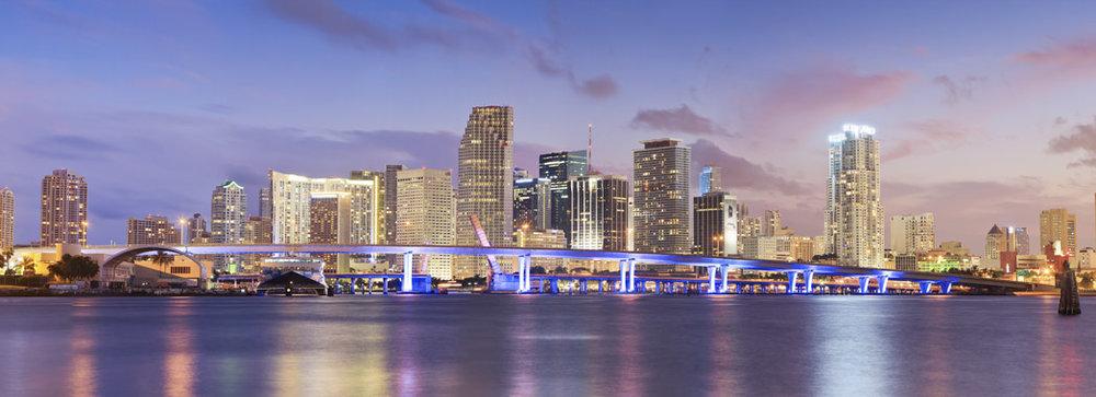 Miami Skyline Demetri Demascus REALTOR Miami