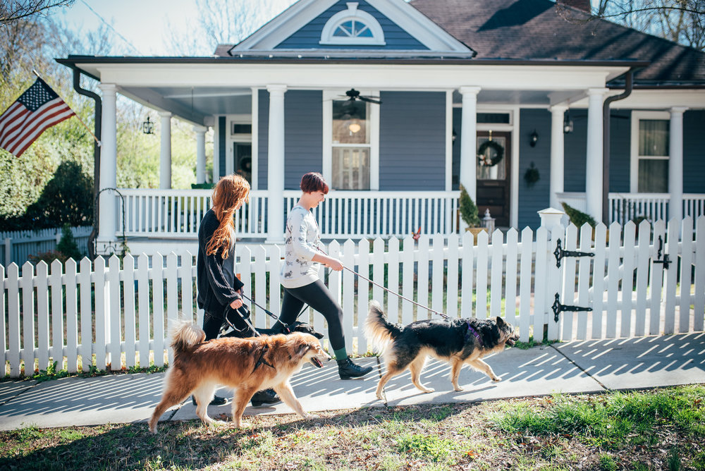 pupventure raleigh - raleigh dogwalking services -