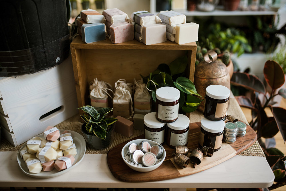 Zen Succulents - Lifestyle Blog - Small Business - Creatives - Creative Consultants - Product Photography - Raleigh Creative Community - Raleigh Small Business