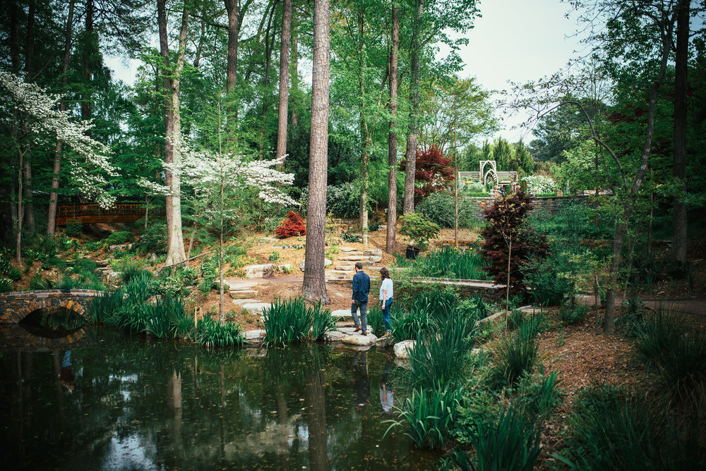 favorite gardens in the triangle - north carolina gardens - north carolina lifestyle blog