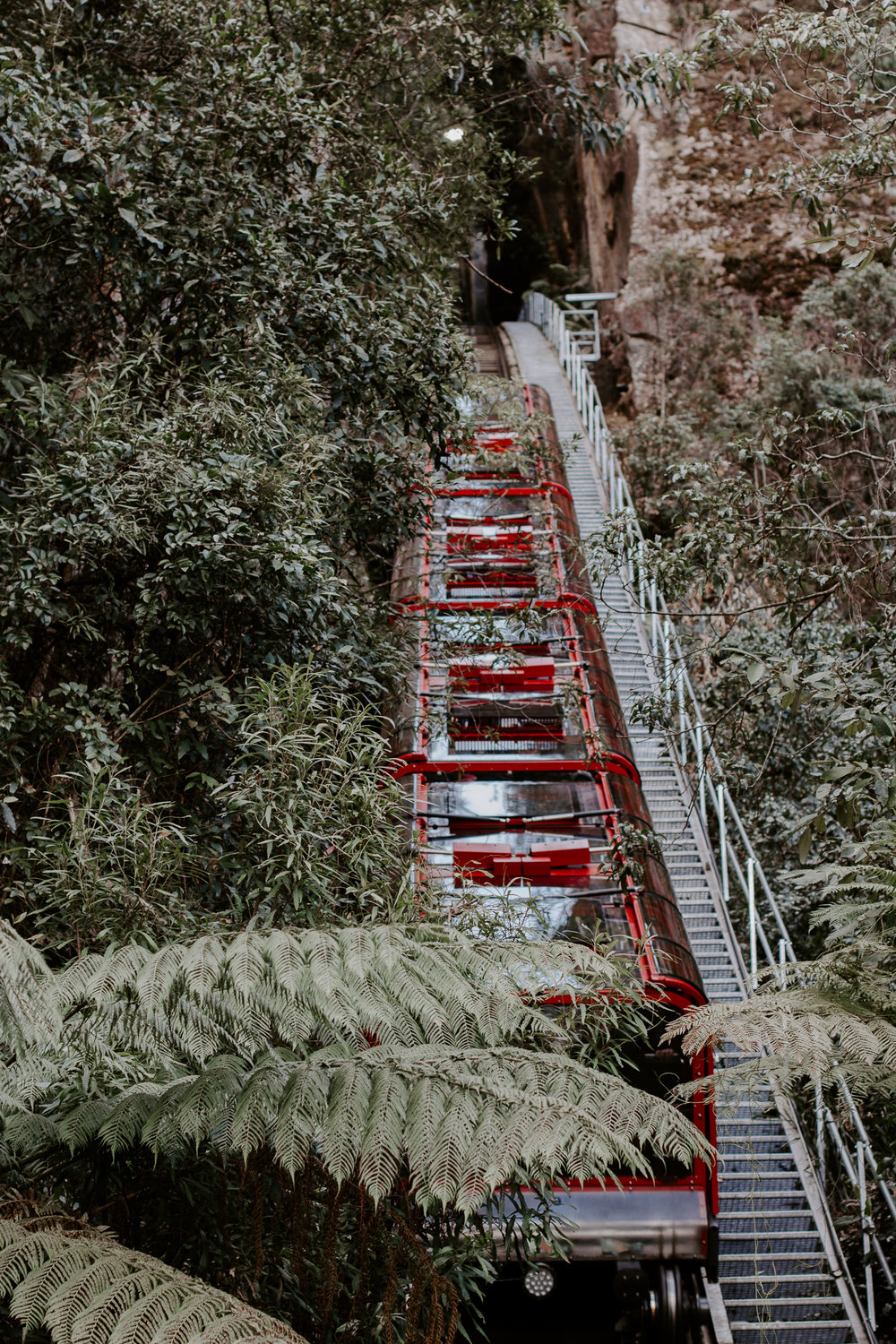 The  Scenic Railway  is the steepest railway in the World! At the top of the railway is a food court with a coffee shop and gift shop, but at the bottom, you can get off and explore this portion of the national park. There are several hiking trails to go on depending on how long you want to stay there. This ride is so fun—just make sure to hold onto all of your belongings hahha