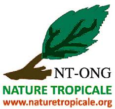 BeninEn 01 Logo NTONGb.png