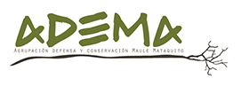 Logo ADEMA.png