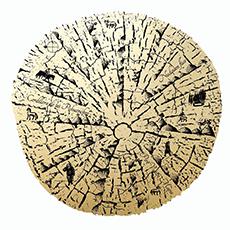 logo T.E.png