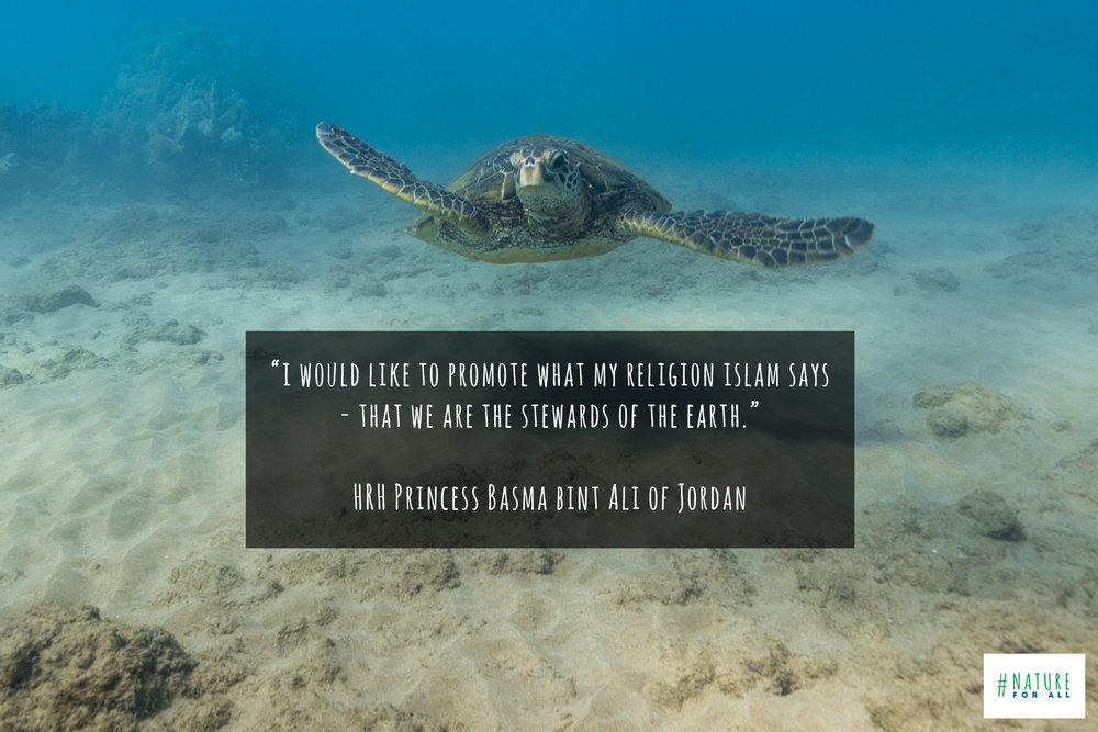 Photo taken at Malu'aka Beach, Maui, & quote by  HRH Princess Basma bint Ali of Jordan © James Sherwood, Bluebottle Films.jpg