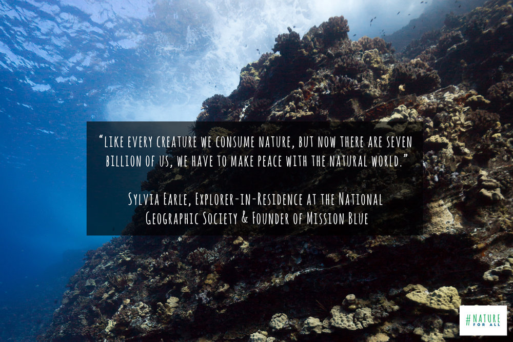 Photo taken at Molokini Atoll, Maui, & quote by Sylvia Earle © James Sherwood, Bluebottle Films.jpg
