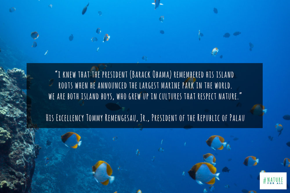 Photo taken at Molokini Crater, Hawaii, & quote by Tommy Remengesau - President Palau © James Sherwood, Bluebottle Films.jpg