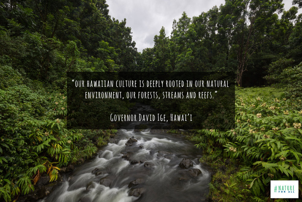 Photo taken on the Road to Hana, Maui, & quote by David Ige, Govenor of Hawaii © James Sherwood, Bluebottle Films.jpg