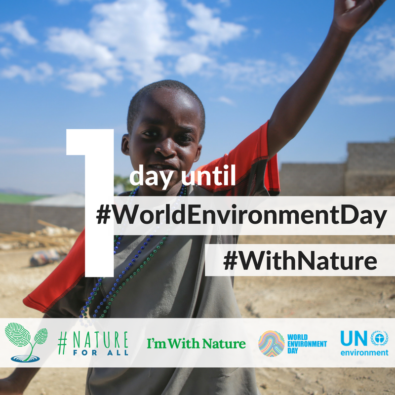 Lesson plans for UN World Environment Day -
