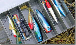 Critical choice - you only need a small selection of lures