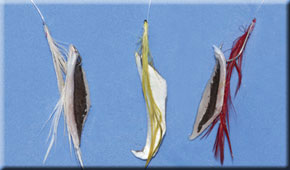 feather-rigs.jpg