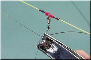 7. Tie a hooklength to each swivel