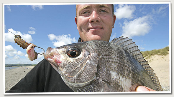 Sea Fishing For Black Bream From The Beach Sea Angler