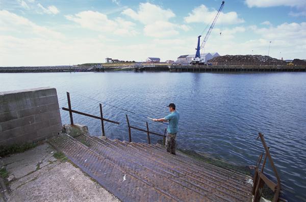 The-Ferry-Steps_a9EMAP-SA~1.jpg