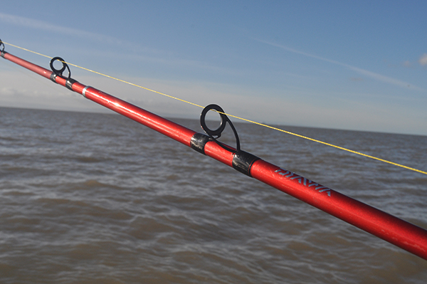 Daiwa D Wave Boat Rod 7ft 20-30lb NEW Sea Fishing Boat Rod