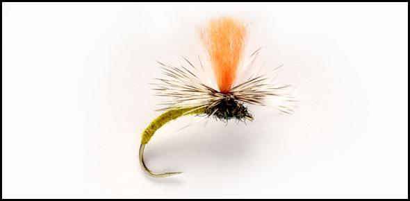 dryfly.jpg