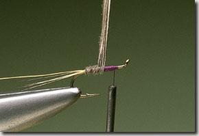 kites-imp-pic-5.jpg