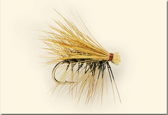 Elk-Hair-Sedge-final.jpg