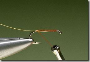 Elk-Hair-Sedge-pic-1.jpg