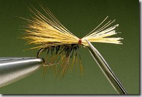 Elk-Hair-Sedge-pic-10.jpg