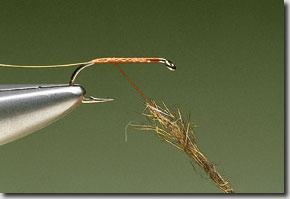 Elk-Hair-Sedge-pic-2.jpg
