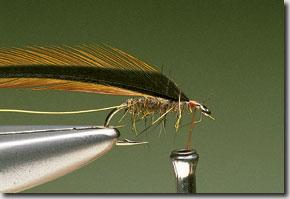 Elk-Hair-Sedge-pic-5.jpg