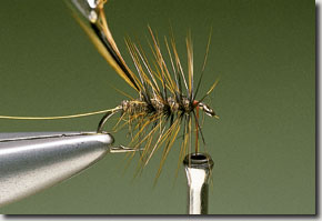Elk-Hair-Sedge-pic-6.jpg