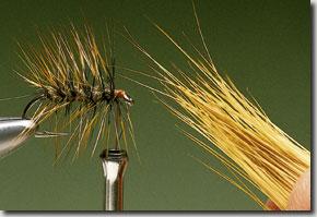 Elk-Hair-Sedge-pic-8.jpg
