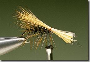 Elk-Hair-Sedge-pic-9.jpg