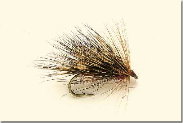 sedge-hog-12-yellow.jpg