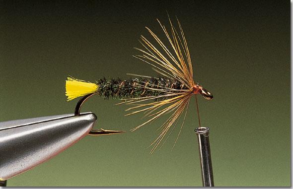 Stickfly-pic-11.jpg