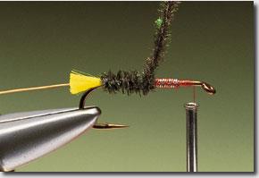 Stickfly-pic-7.jpg