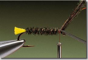 Stickfly-pic-8.jpg