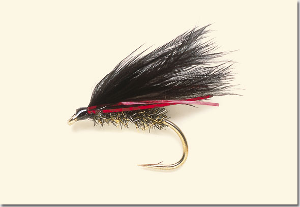Sullivan Conservation likewise Hqdefault likewise Cor Y likewise Grass Cased Caddisfly Pattern Left Quarter further Map North Uist. on fly fishing knots