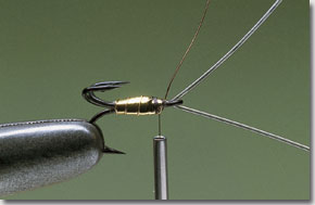 surface-lure-pic-3.jpg