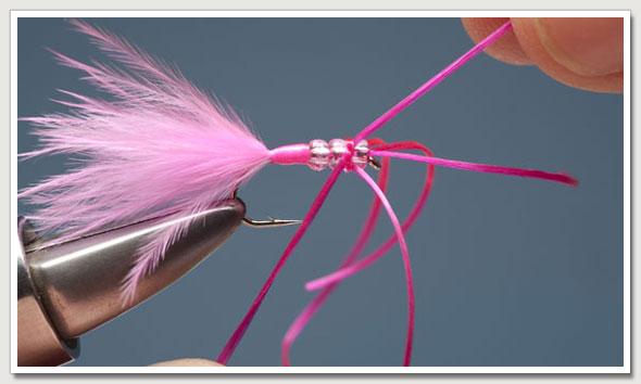 pink_worm-9.jpg