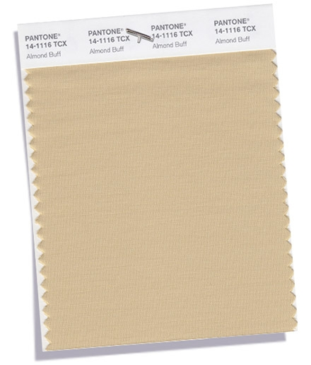 Pantone-Fashion-Color-Trend-Report-London-Fall-2018-Swatch-Almond-Buff.jpg