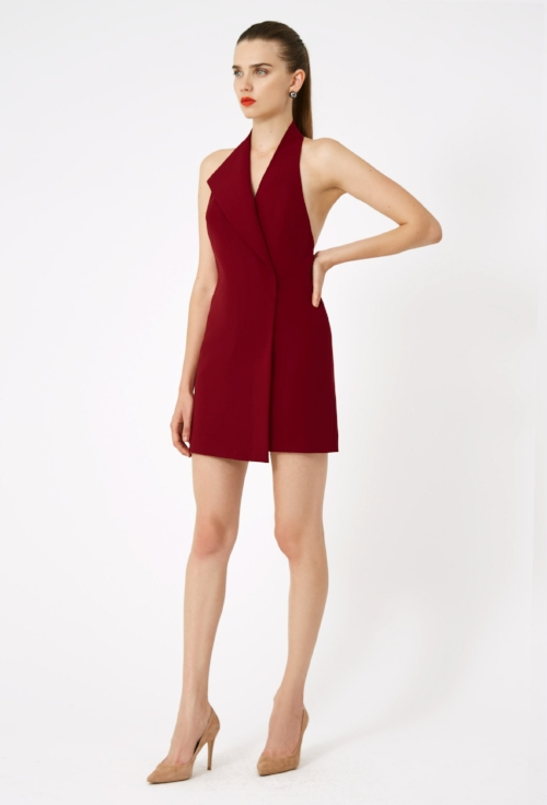 carla_mini_dress_wine_0985.jpg