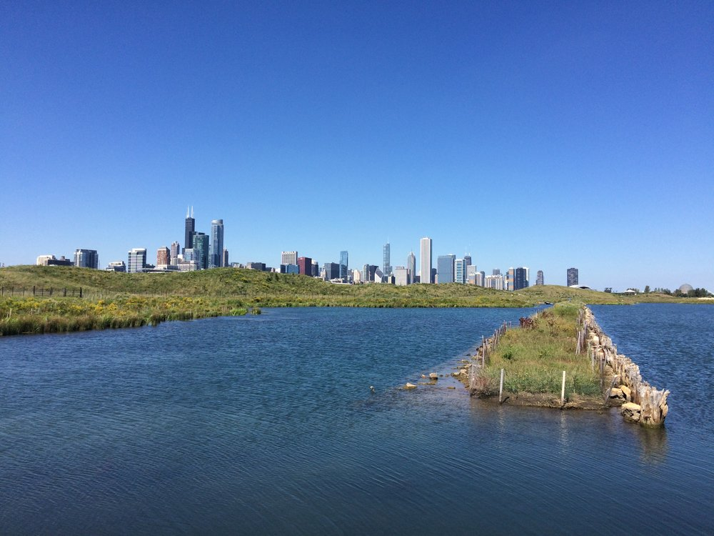 Skyline from Northerly Island