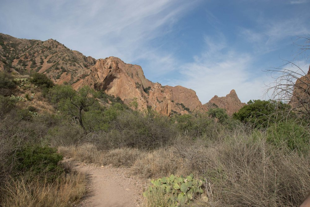 Chisos Mountains scenery