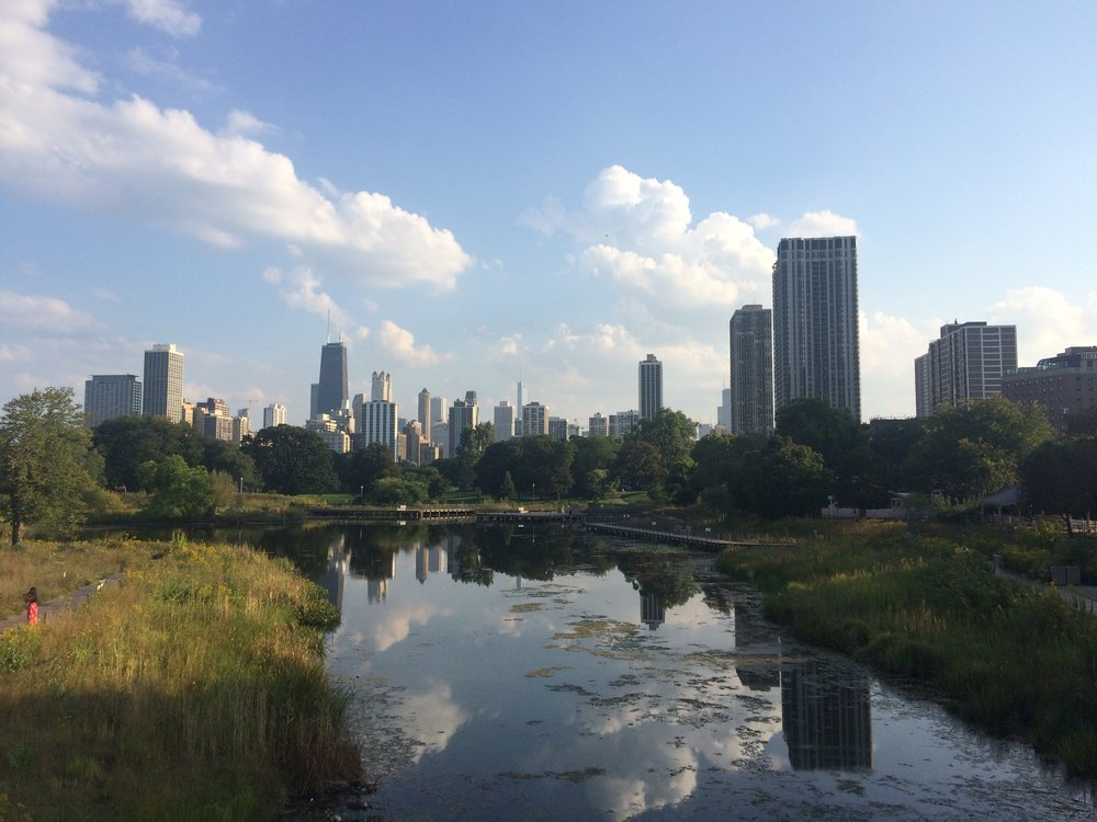 A view of the Chicago skyline over South Pond, right near the trip's hotel. We visited here on the trip's first afternoon. Photo by Josh Engel.