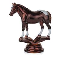 Equestrian- Appaloosa